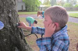 Ein Junge hört einen Baum ab