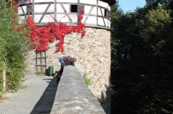 Blick von der Burgmauer zum Burgturm